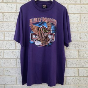 Harley Davidson Motorcycles Vintage Tee https://www.secondlovesvintage.com/