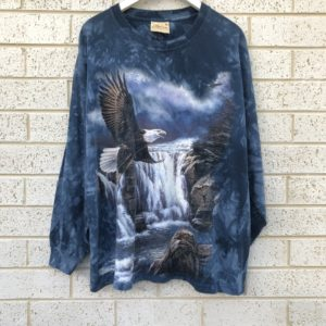 Eagle Waterfall Mountain Vintage Top https://www.secondlovesvintage.com/